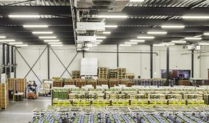 Warehousing & Stock control